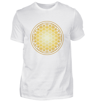 Flower Of Life Sacred Geometry Yoga