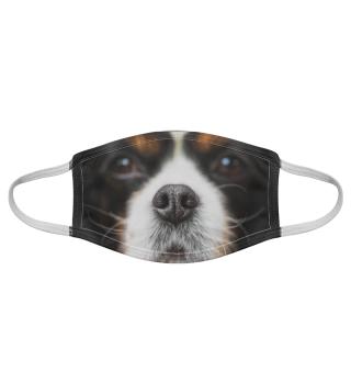 Gesichtsmaske mit Hundemotiv 20.33