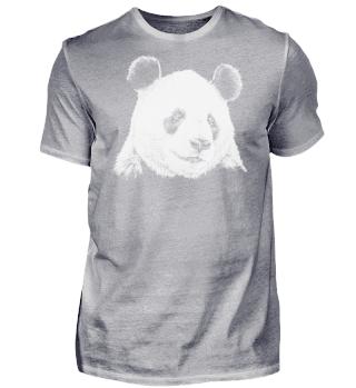 Panda Zeichnung Portrait schwarz weiß