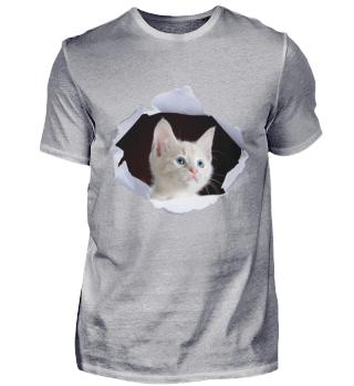 3D Katze, Cat, Kätzchen Geschenkidee