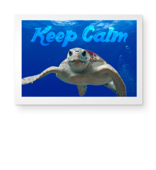 ★ Photo - Sea Turtle - KEEP CALM 1