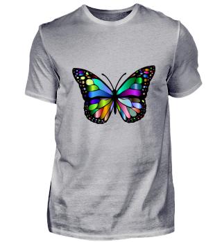 Schmetterling mit bunten Flügeln Natur