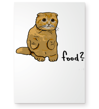 Cute Cat asks for Food