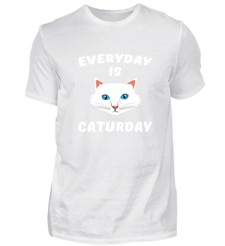 Everyday is Caturday gift idea