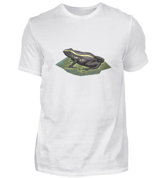 Frosch   Geschenkidee