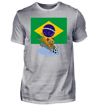 Brazil soccer cat