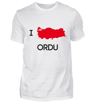 I Love ORDU
