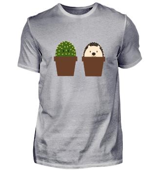 Kinder Igel Kaktus beste Freunde Pflanze
