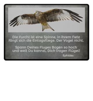 Milan Vogelflug Dich tragen Flügel Ephides