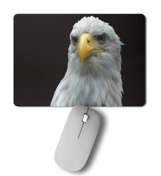 Weißkopf-Seeadler Mousepad