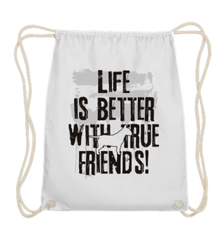Life's better with true friend PittBull1
