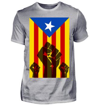 Catalunya Katalonien Unabhängigkeit