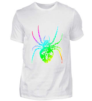 colorful spider crawling phobia poison
