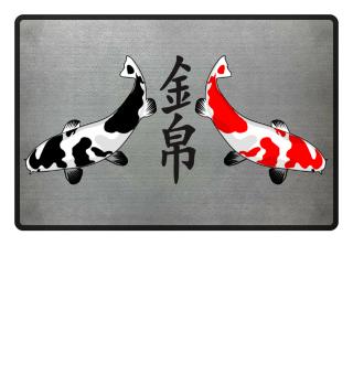 KOI - Nishikigoi Bekko white red black 3