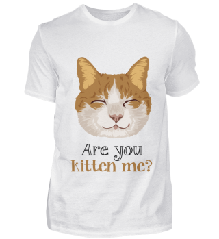 D007-0049A Are you kitten me cat / Katze