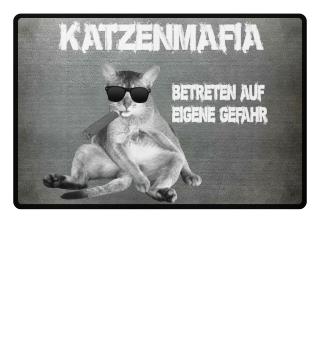Katzenmafia - Betreten auf eigene Gefahr