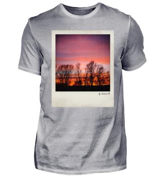 Bäume Sonnenuntergang | Trees sunset