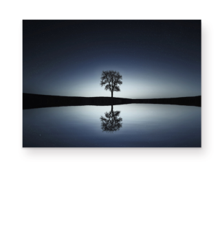 A Tree Alone At The Sea 1c