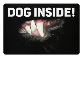 Dog inside...