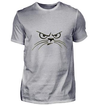 Cat angry cat Cats love grumpy