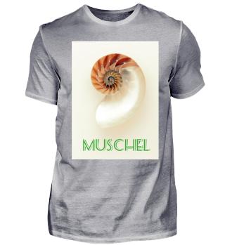 MUSCHEL shell STRAND SOMMER SAND