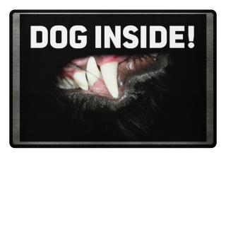 dog inside
