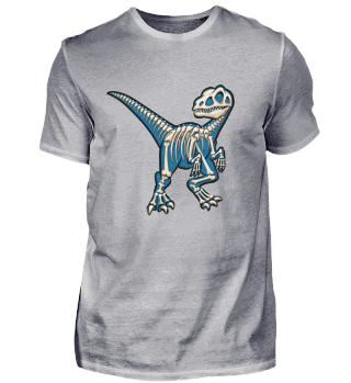 Dino Velociraptor Skelett Raptor