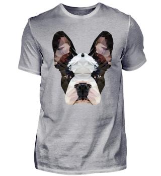 Französiche Bulldogge Hund Haustier