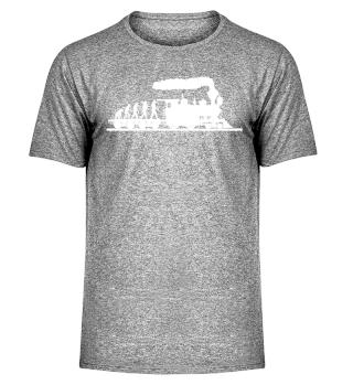 Züge Lokomotive Evolution