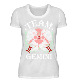 Zodiac Sign Team Gemini