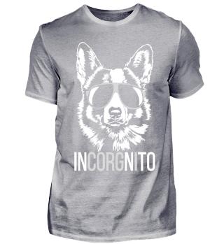 INCORGNITO Corgi Hund Hunde dog