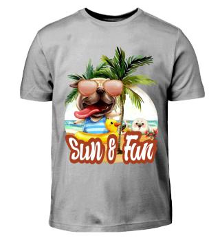 Sun und Fun 1.3.1