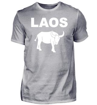 Asien Laos - Wasserbüffel