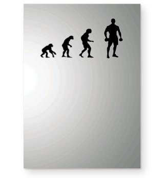 Evolution Boxing