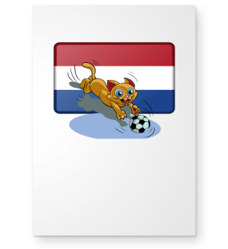 Holland soccer cat