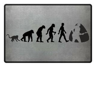 Evolution Of Humans - Guitarist I