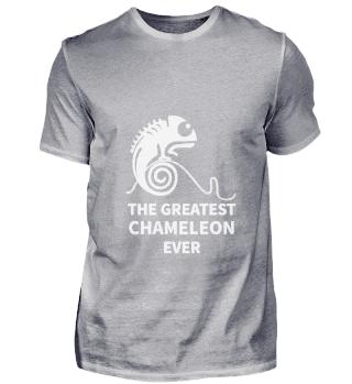 Chameleon Chameleon Colourful Reptile Co