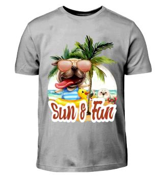Sun und Fun 1.3.3