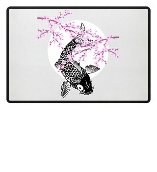 Cherry Blossoms SAKURA NISHIKIGOI Koi 2