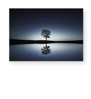 ★ A Tree Alone At The Sea 1a