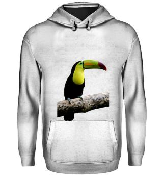 tucan hoodie