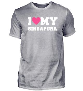I love my Singapura Cat