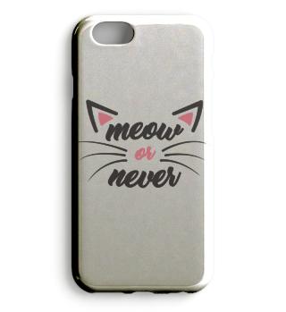 Cat Katze Shirt Meow or never