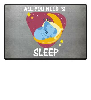 All you need is sleep koala pillow moon