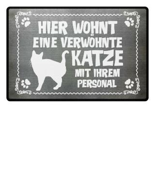...verwöhnte Katze mit Personal - Geschenk