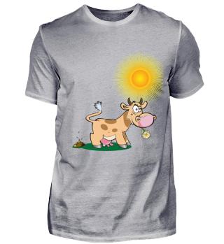 Kuh in der Sonne, wandern, berge