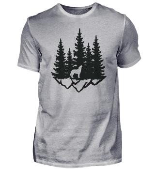 Wald Landschaft