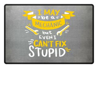 Mechanic can't fix stupid