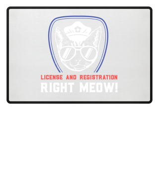 License and Registration RIGHT MEOW!