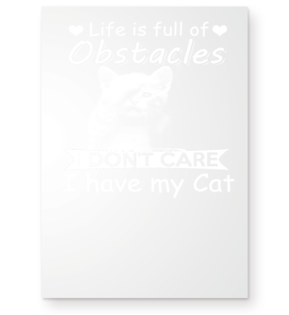 Life is full of Obstacles I dont Care